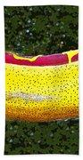 Relishing A Hotdog Beach Towel
