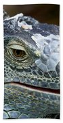 Rhinoceros Iguana Beach Towel by Fabrizio Troiani
