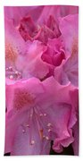 Rhododendron Bloom Beach Towel