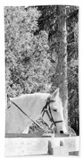 Riding Soldiers B And W IIi Beach Towel