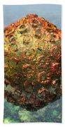Rift Valley Fever Virus 1 Beach Towel by Russell Kightley