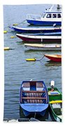 River Boats On Danube Beach Towel by Elena Elisseeva
