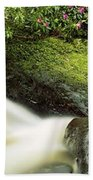 River Flowing Through A Forest, Torc Beach Towel