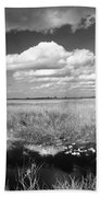 River Of Grass - The Everglades Beach Towel