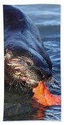 River Otter Beach Towel