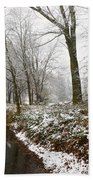 River With Snow Beach Towel