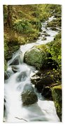 River With Trees In The Forest Beach Towel