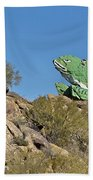 Road Frog Beach Towel