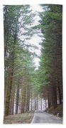 Road In The Forest Beach Towel
