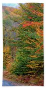 Road Through Autumn Woods Beach Towel by Larry Landolfi and Photo Researchers