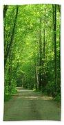Road To Jasper Woods Beach Towel