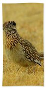 Roadrunner Hen Beach Towel