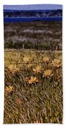 Roadside Flowers Beach Towel