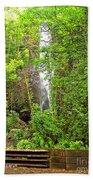 Roadside Waterfall Beach Towel