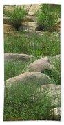 Rocks And Grass At Amidon Conservation Area Missouri Beach Towel