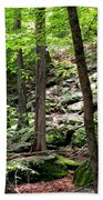 Rocky Forest Of Chatfield Beach Towel
