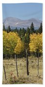 Rocky Mountain High Country Autumn Fall Foliage Scenic View Beach Towel