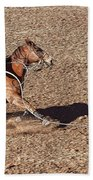 Rodeo 21 Beach Towel