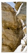 Roosevelt On Mt Rushmore National Monument Beach Towel
