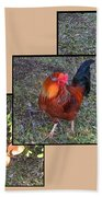 Rooster Red Beach Towel