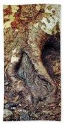 Roots Beach Towel by Silvia Ganora
