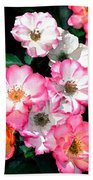 Rose 133 Beach Towel by Pamela Cooper