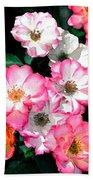 Rose 133 Beach Sheet