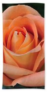 Rose 33 Beach Towel