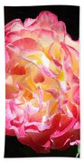 Rose Floral Fine Art Prints Pink Roses Flower Beach Towel