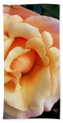 Rose Of Many Pastels Beach Towel