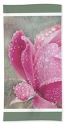 Rose Triptych 11 Beach Towel