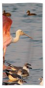 Roseate Spoonbill At The Bay Beach Towel