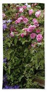 Roses On The Fence Beach Towel