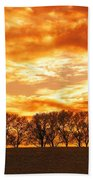 Row Of Trees Beach Towel