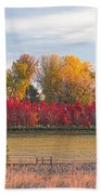 Rural Country Autumn Scenic View Beach Towel