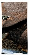 Rusty Impe Beach Towel by DigiArt Diaries by Vicky B Fuller