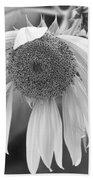 Sad Sunflower Black And White Beach Towel