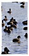 Safety In Numbers Beach Towel by Douglas Barnard