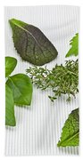 Salad Greens And Spices Beach Towel by Joana Kruse
