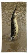 Salt Water Crocodile Beach Towel
