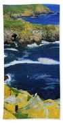 Saltee Islands, Co Wexford, Ireland Beach Towel