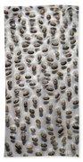 Salvia Polystachya Seeds Beach Towel