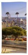 Santa Monica Beach Towel