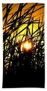 Sawgrass Sunrise Beach Towel