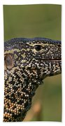 Scales For Breakfast Beach Towel