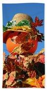 Scarecrow Boa Beach Towel