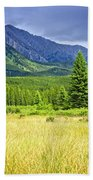 Scenic View In Canadian Rockies Beach Towel by Elena Elisseeva