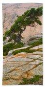 Schoodic Cliffs Beach Towel