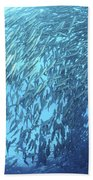 School Of Jacks And Divers At Liberty Beach Towel