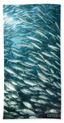 School Of Jacks, Indonesia Beach Towel